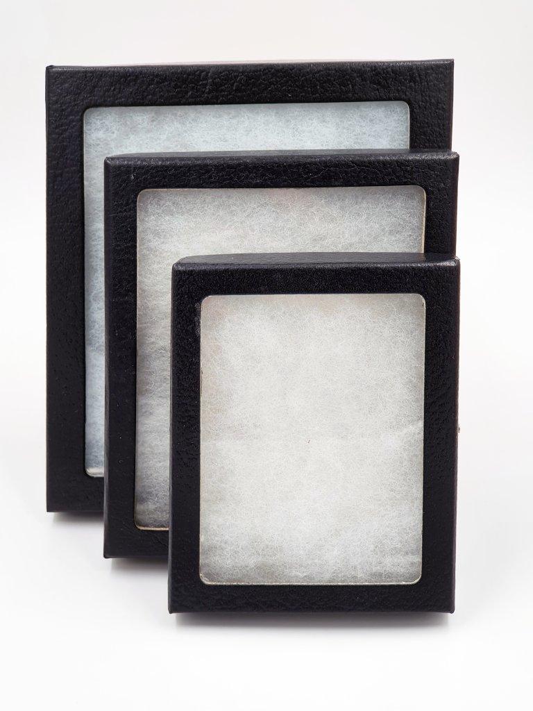 Riker box (1)