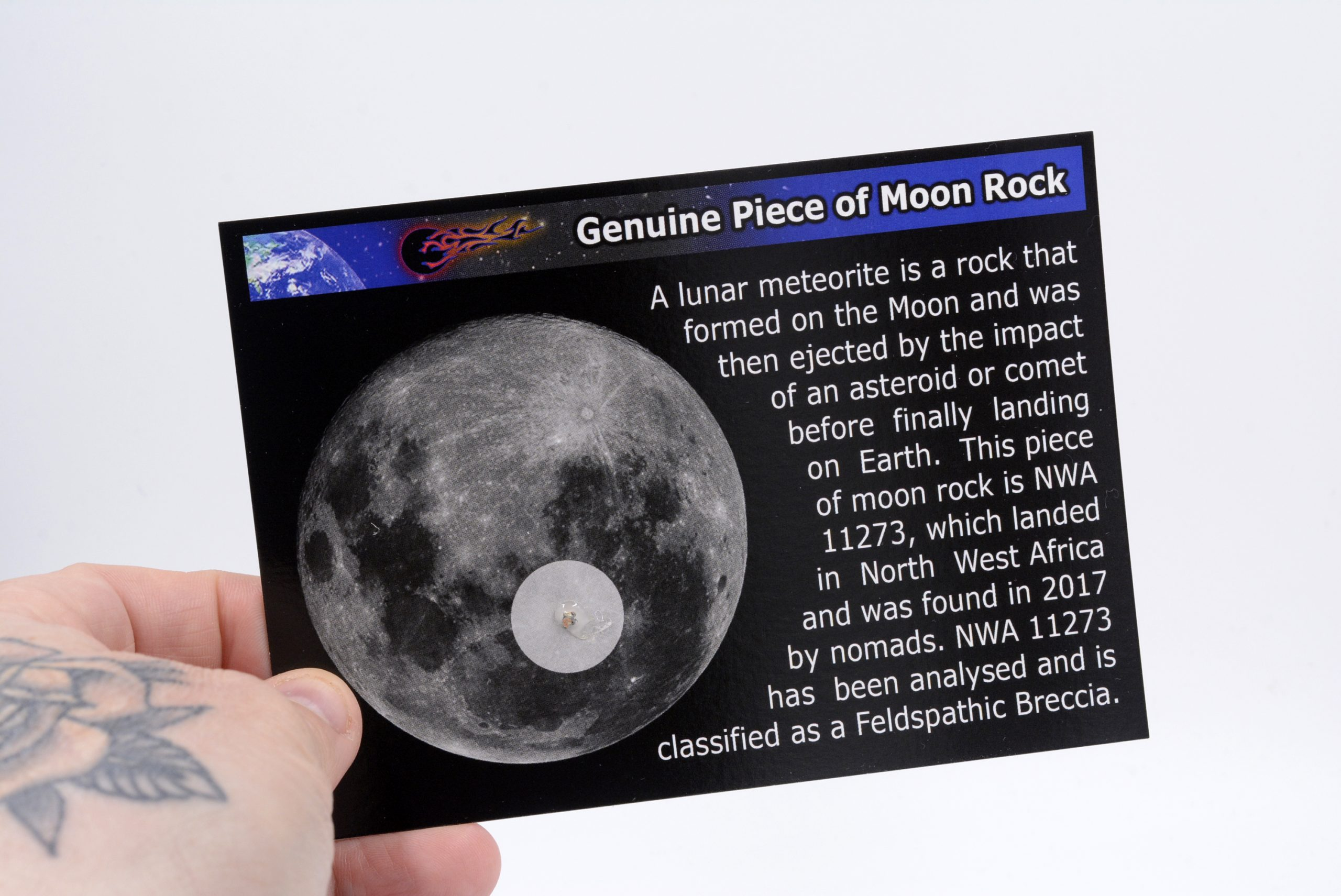 moon-rock-card (5)